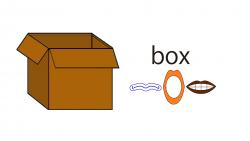 005box-word