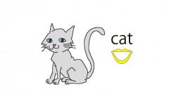 005cat-word