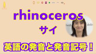 サイ rhinoceros